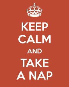 FPV_Take-a-Nap_1112